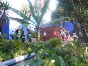 Frida garden1